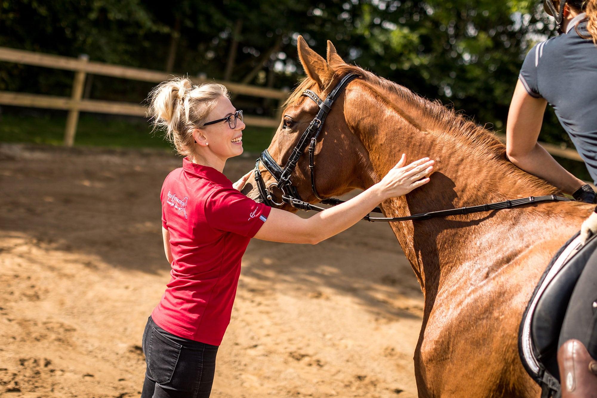 Hestefysioterapeut